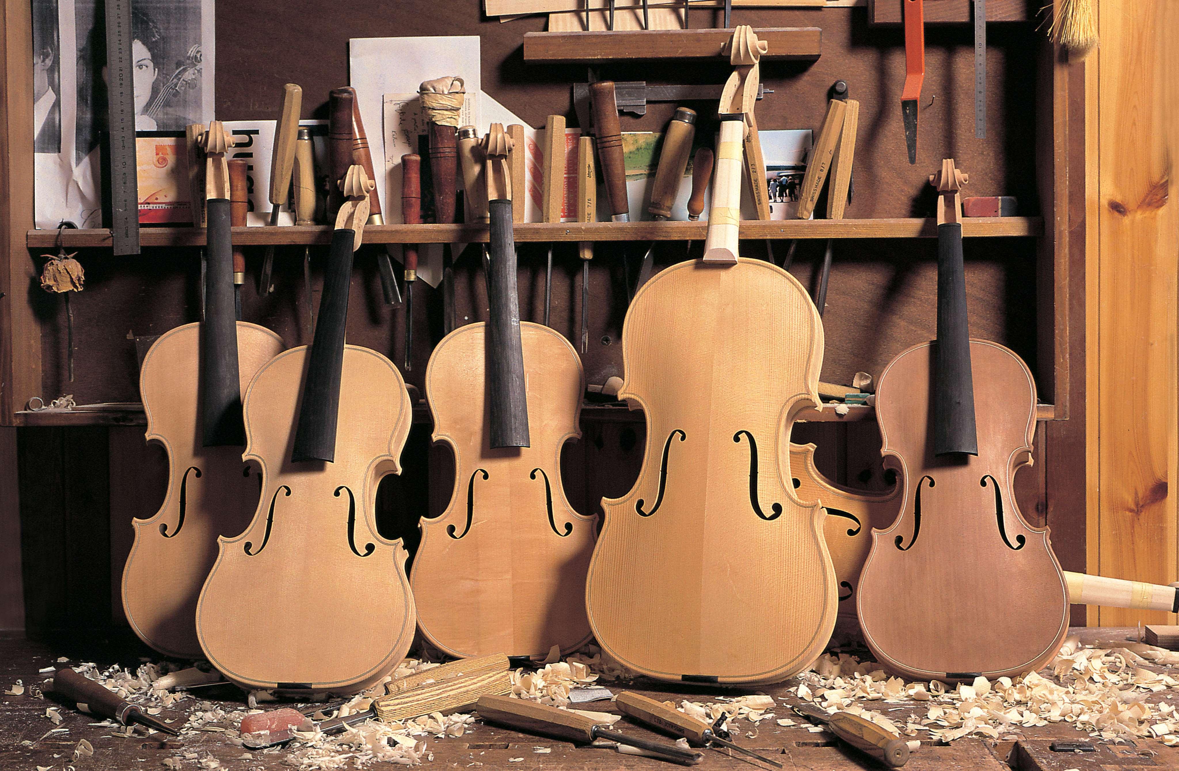 弦乐乐器销售