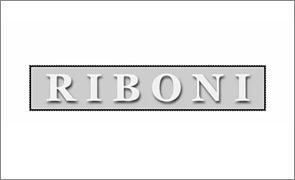 意大利RIBONI 提琴盒